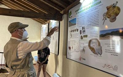 aves-y-arqueologia