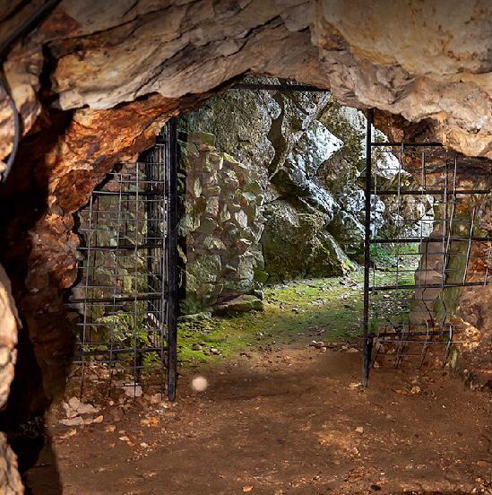 Visita Minas Wolframio en Navasfrias Salamanca